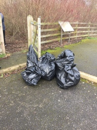 Just a few of the many bags of litter collected